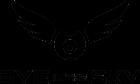 logo eyeinthesky.ro